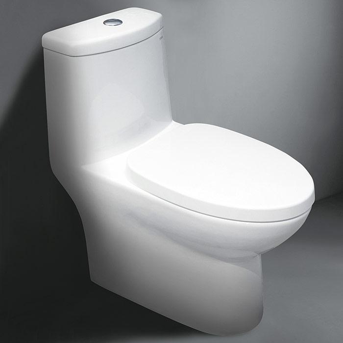 C0-1160 Porcelain Toilet