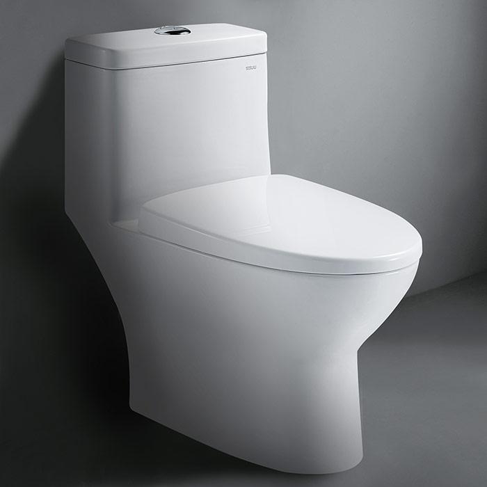 C0-1161 Porcelain Toilet
